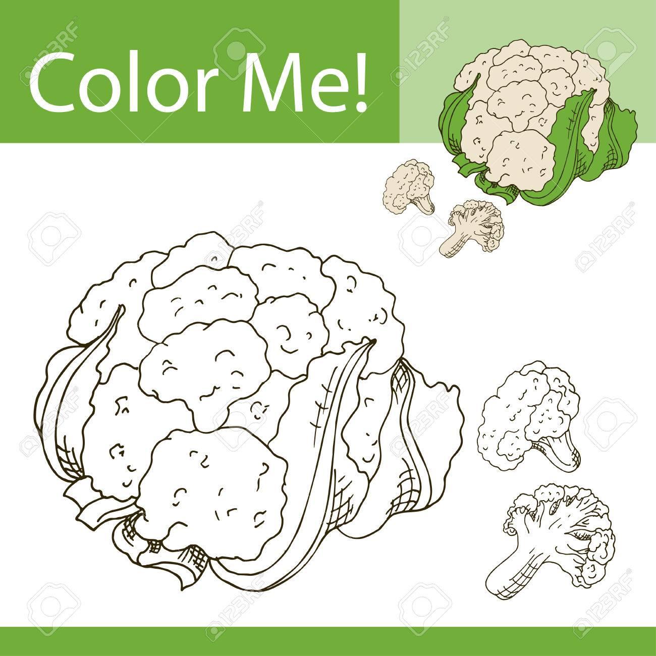 Educación Para Colorear La Página Con Vegetales. Dibujado A Mano ...