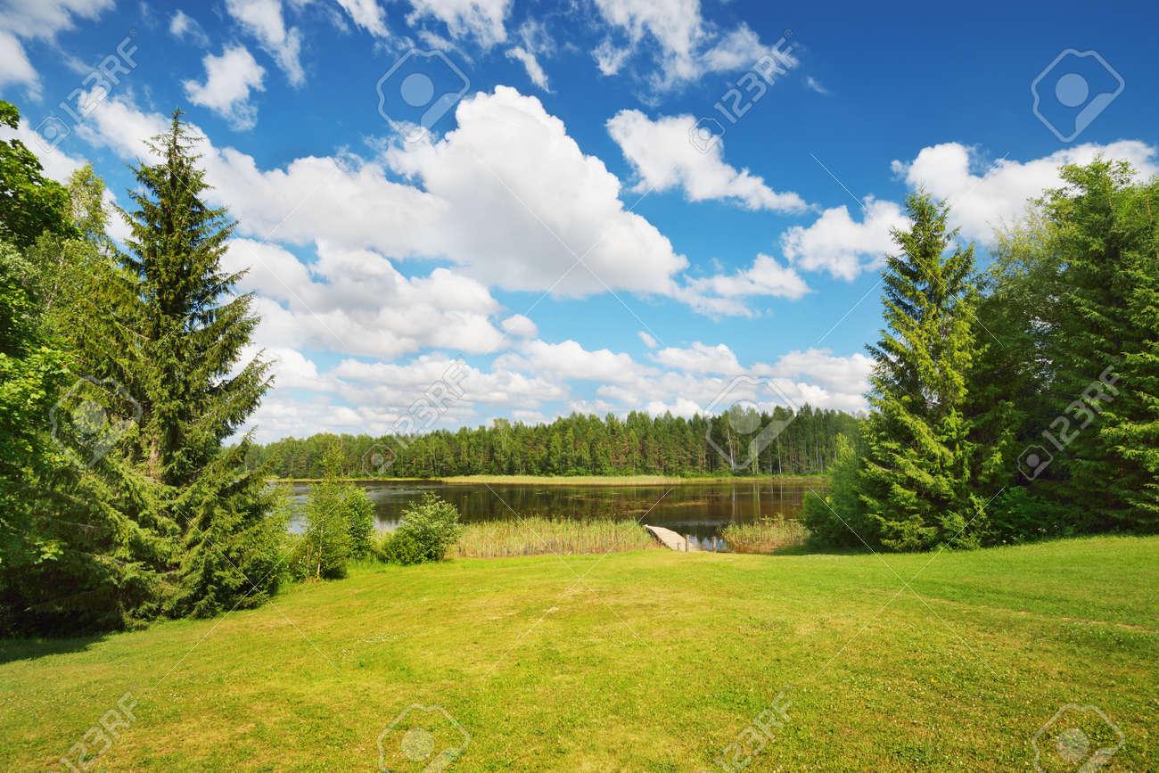 A lake in Estonia in beautiful summer day - 168350827