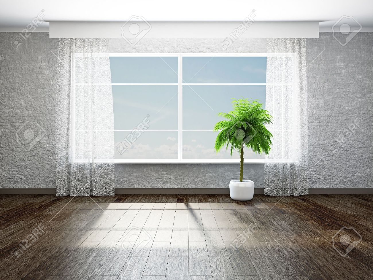 The empty room with plant near the window Stock Photo - 19475492