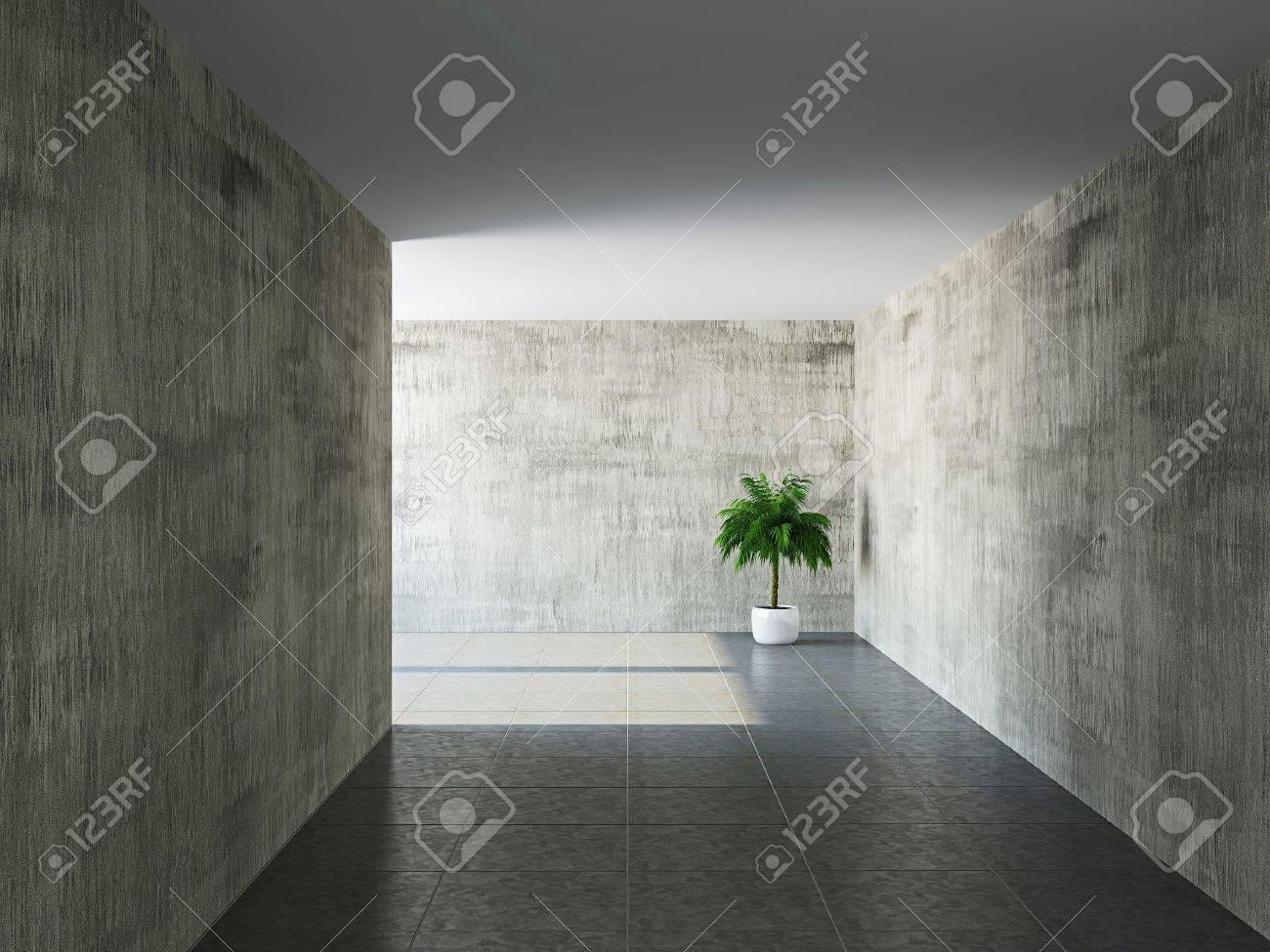 Corridor with old walls and a palm Stock Photo - 19984725