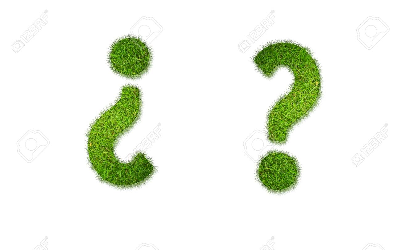 Illustration with question grass word on white background Stock Photo - 17254627
