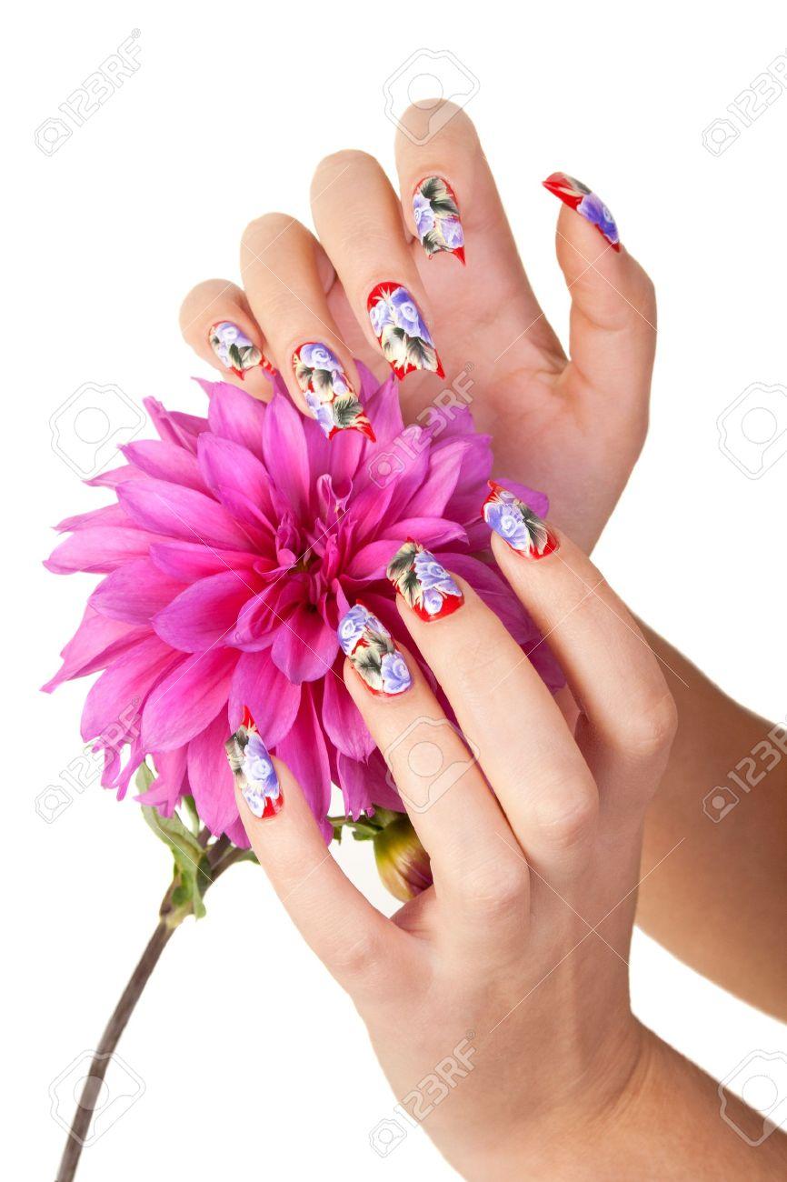 Zwei Hände Der Mädchen Mit Schönen Nägel Halten Eine Blume, Auf ...