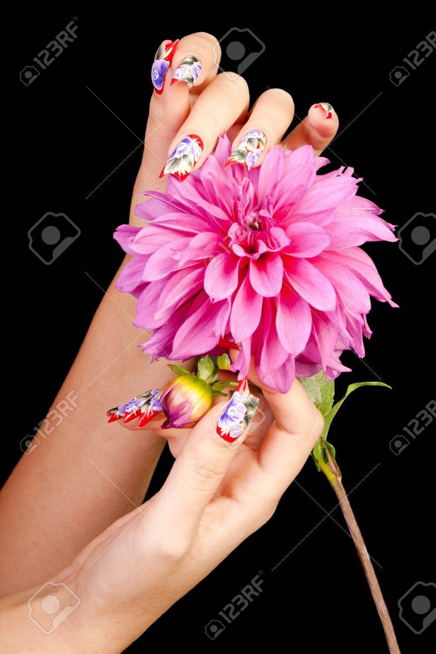 Two female hands with beautiful fingernails over a pink flower, on a black background Stock Photo - 11154311
