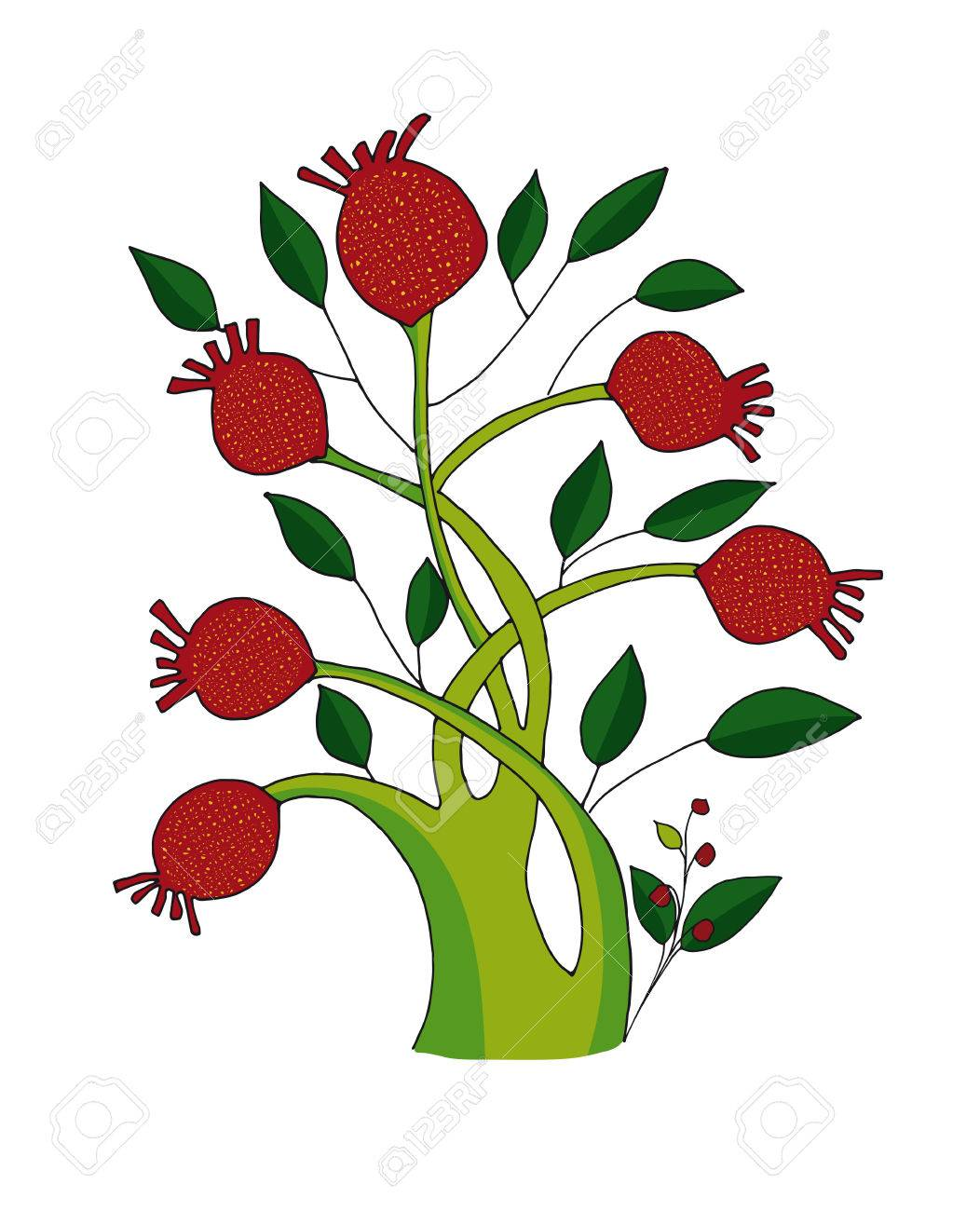 Pomegranate Tree On A Neutral Background Vector Illustration Royalty Free Cliparts Vectors And Stock Illustration Image 50717708