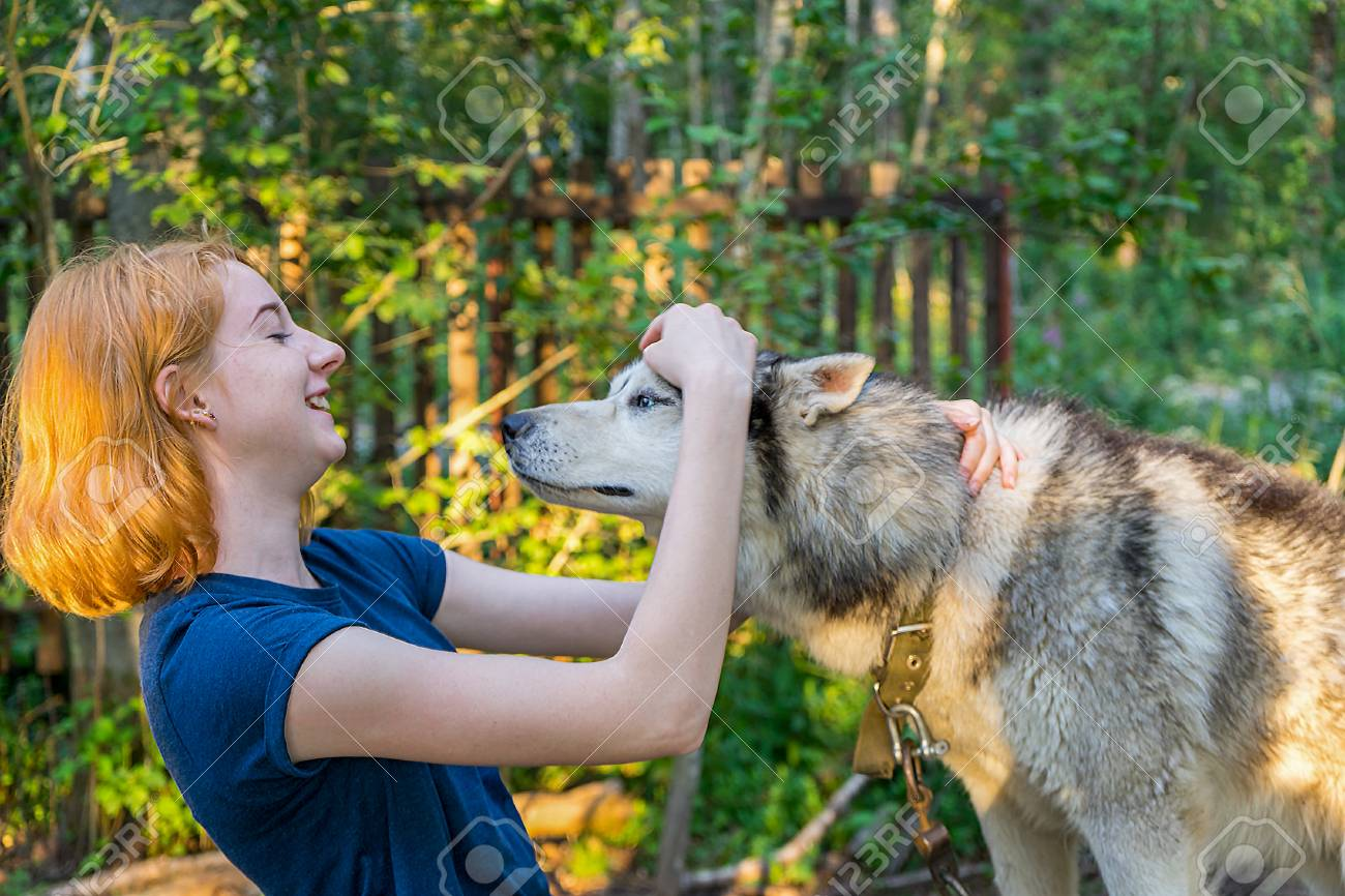 Beautiful Young Lady With Her Adorable Cute Dog Of Siberian Hasky Stock Photo Picture And Royalty Free Image Image 112630433