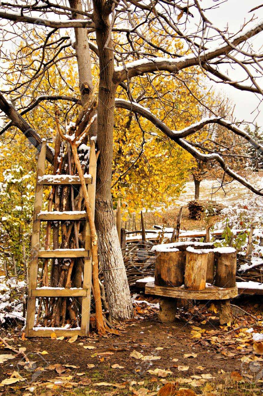 Autumn time and the first snow in rural place Stock Photo - 11699208