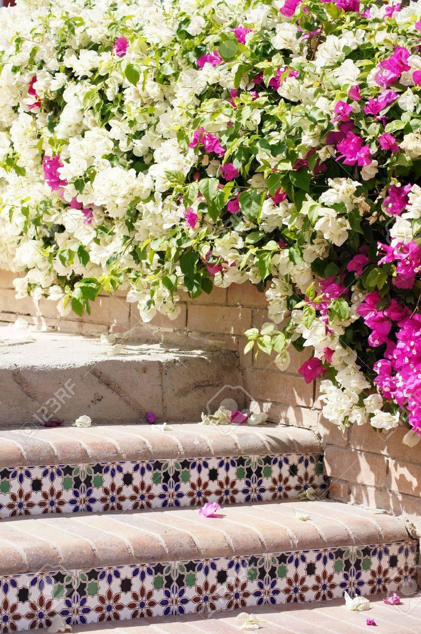 Binnenplaats van mediterrane villa met keramische tegels en de ...