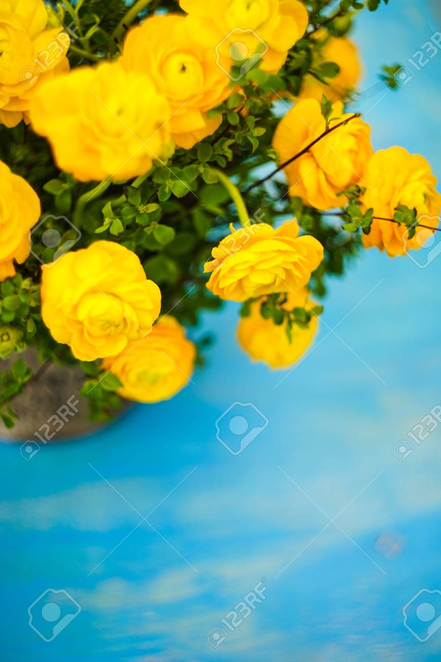 Summer bouquet with bright yellow flowers on rustic blue background stock photo summer bouquet with bright yellow flowers on rustic blue background with copyspace izmirmasajfo