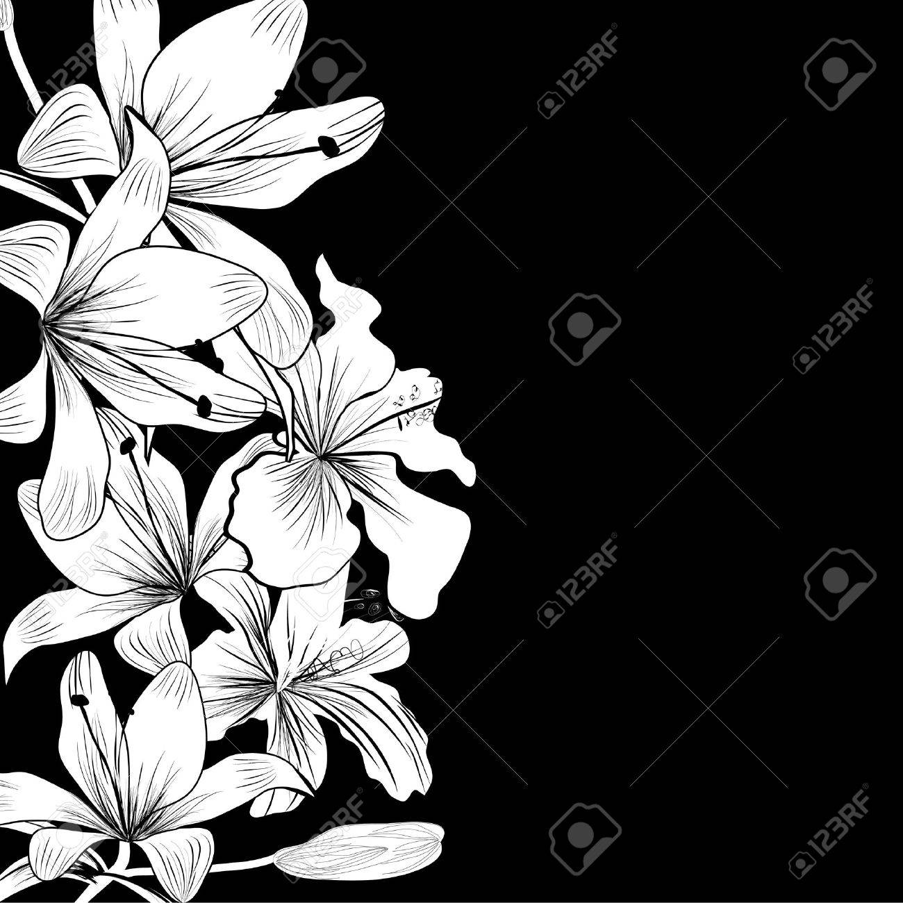 black and white background with white flowers stock vector - Black And White Flowers
