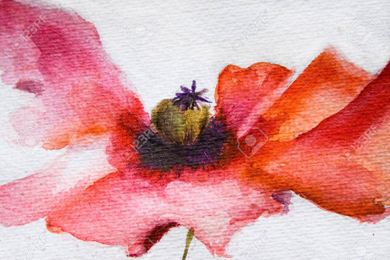 Watercolor poppy flower stock photo picture and royalty free image stock photo watercolor poppy flower mightylinksfo