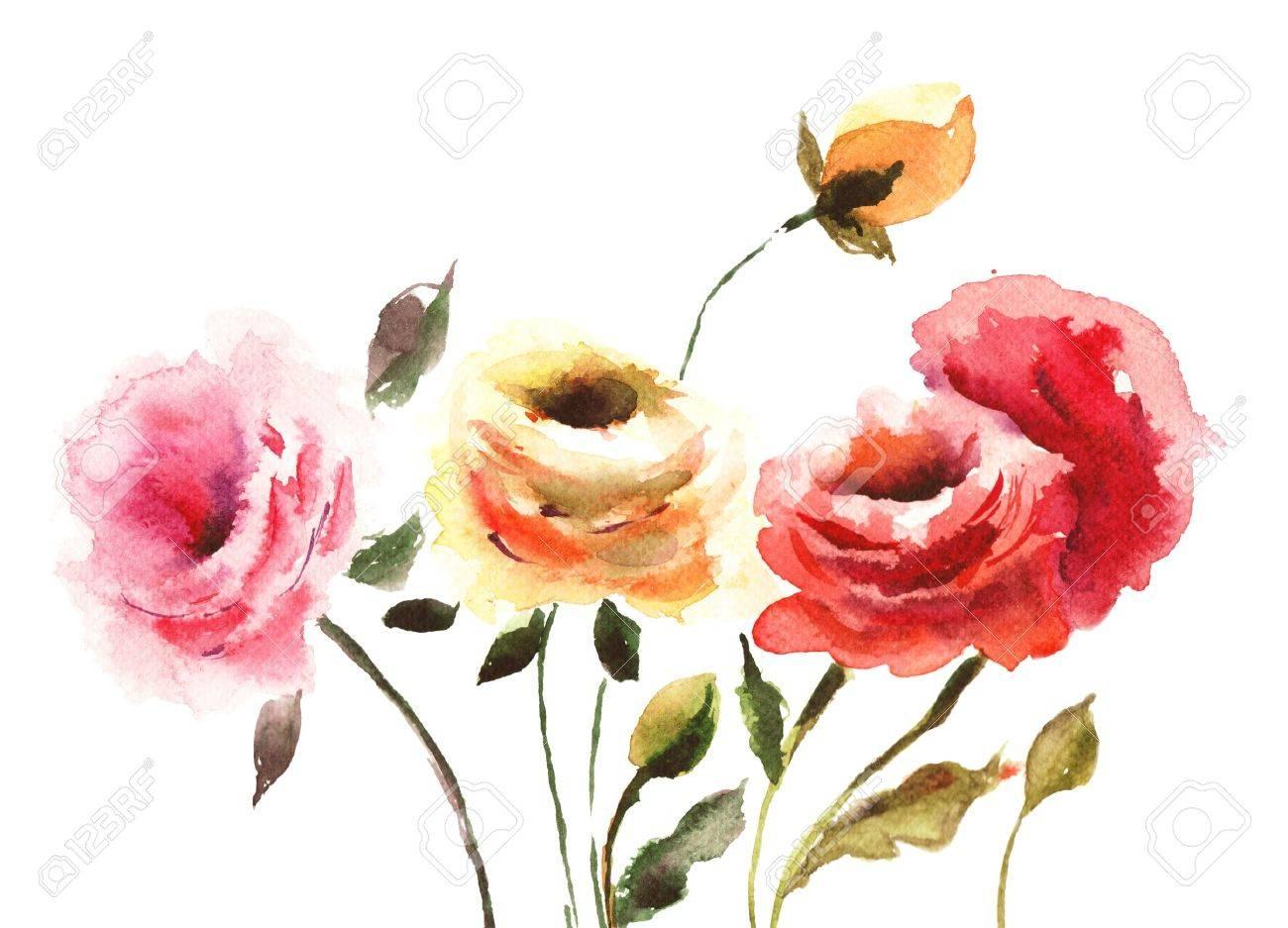Flores Rosas Hermosas Ilustracion Watecolor Fotos Retratos