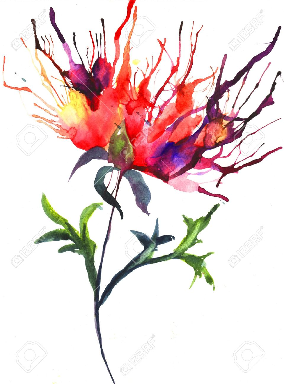 Abstract illustration of Peony flowers Stock Illustration - 14011316