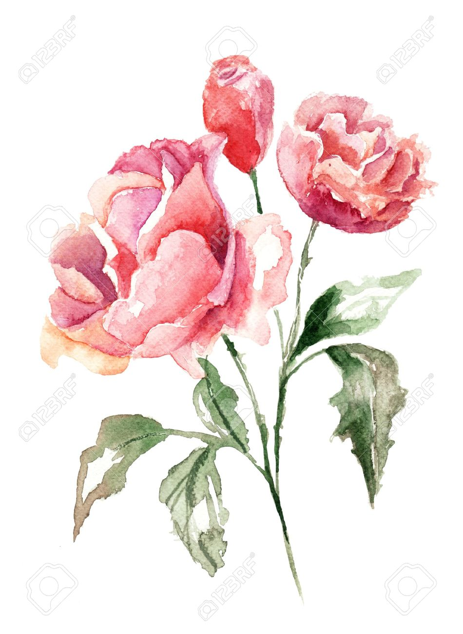 Beautiful flowers watercolor painting stock photo picture and beautiful flowers watercolor painting stock photo 14468172 izmirmasajfo Image collections