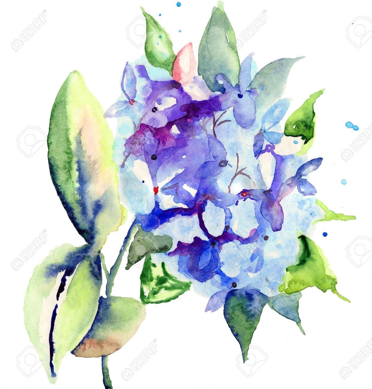 Beautiful blue flowers watercolor illustration stock photo picture beautiful blue flowers watercolor illustration stock illustration 17008952 izmirmasajfo