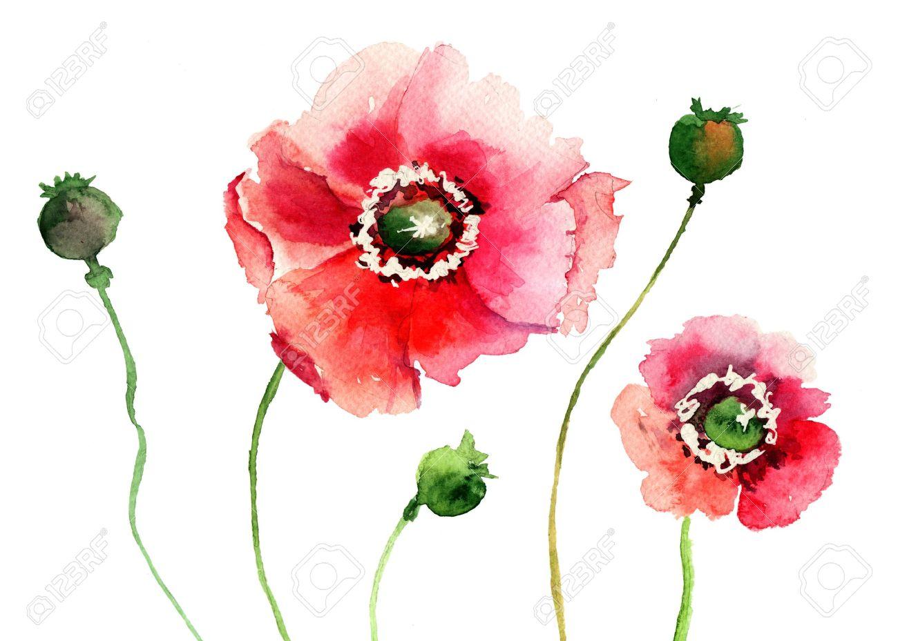 Stylized poppy flowers illustration stock photo picture and royalty illustration stylized poppy flowers illustration mightylinksfo