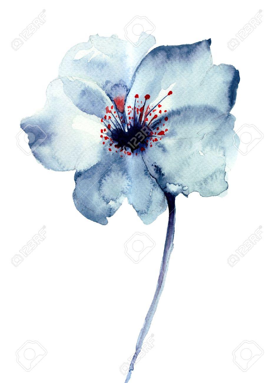 Image Aquarelle fleur bleue décoratifs, illustration d'aquarelle banque d'images et