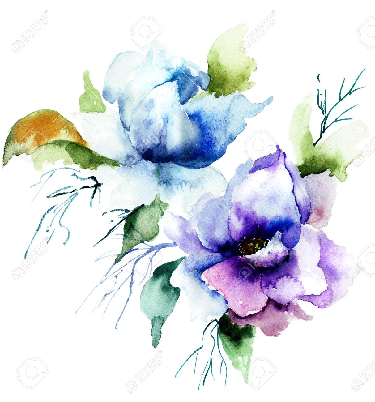 Beautiful Blue Flower Watercolor Painting Stock Photo Picture And Royalty Free Image Image 21202997