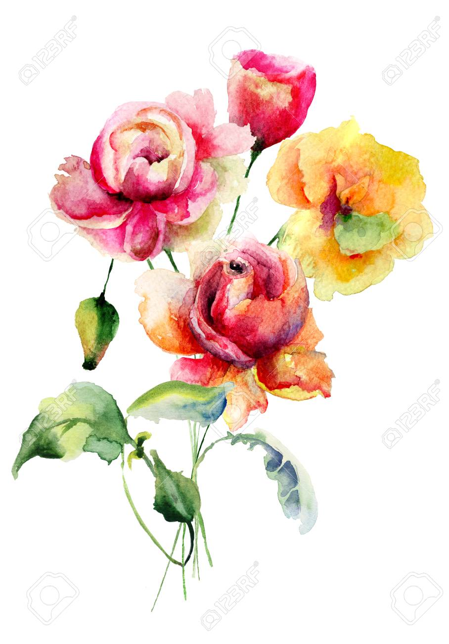 Roses And Poppy Flowers Watercolor Illustration Stock Photo