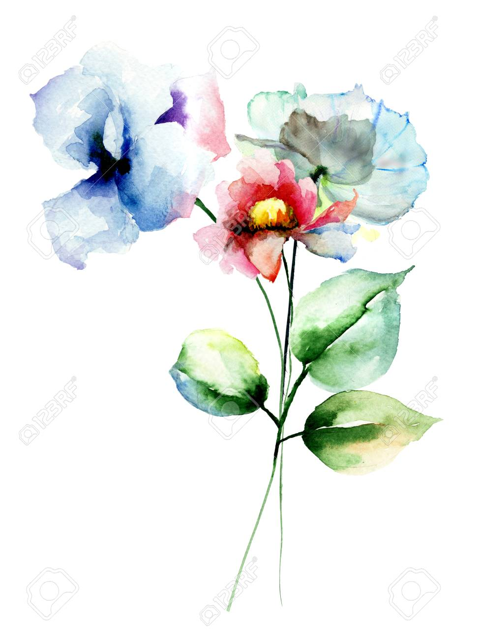 Fiori Watercolor.Stylized Flowers Watercolor Illustration Stock Photo Picture And