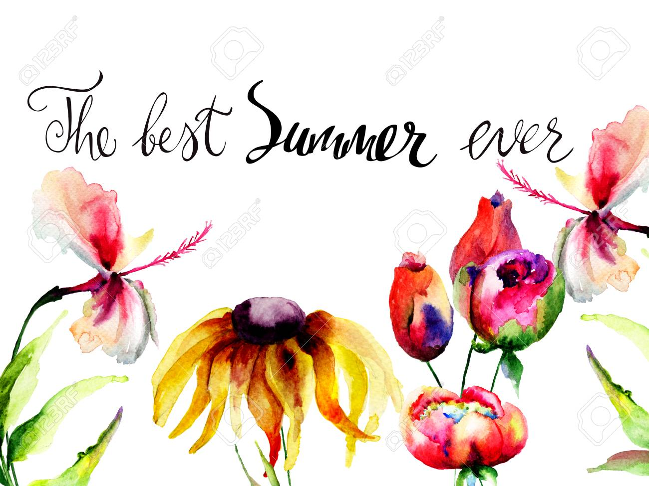 b00aca0bd Original wild flowers with title the best summer ever, Watercolor painting  Stock Photo - 98869612