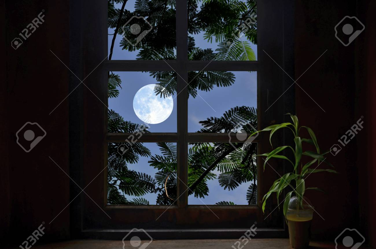 full moon and leaves in window frame stock photo picture and