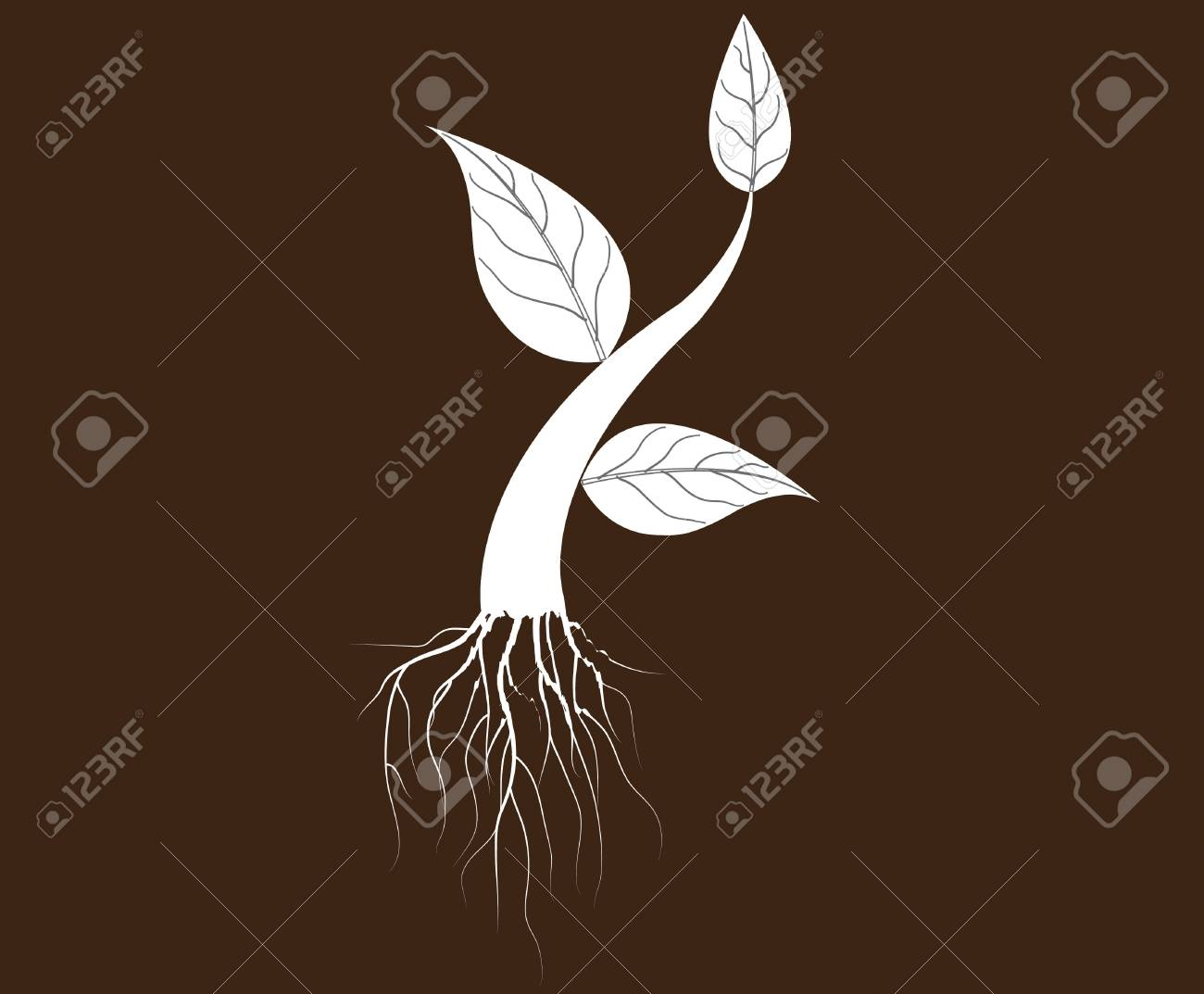 illustration of plant sapling growing on abstract background Stock Vector - 21637848