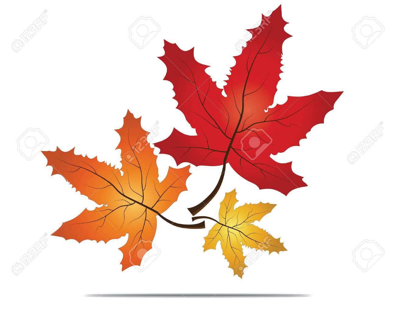 Red Maple Leaf As An Autumn Symbol As A Seasonal Themed Concept Royalty Free Cliparts Vectors And Stock Illustration Image 25288518