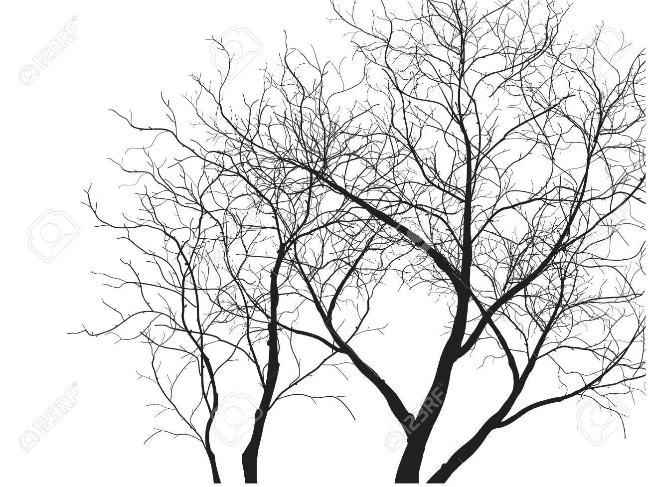 dead tree without leaves vector illustration sketched eps 10 rh 123rf com Dead Oak Tree Vector dead tree vector free
