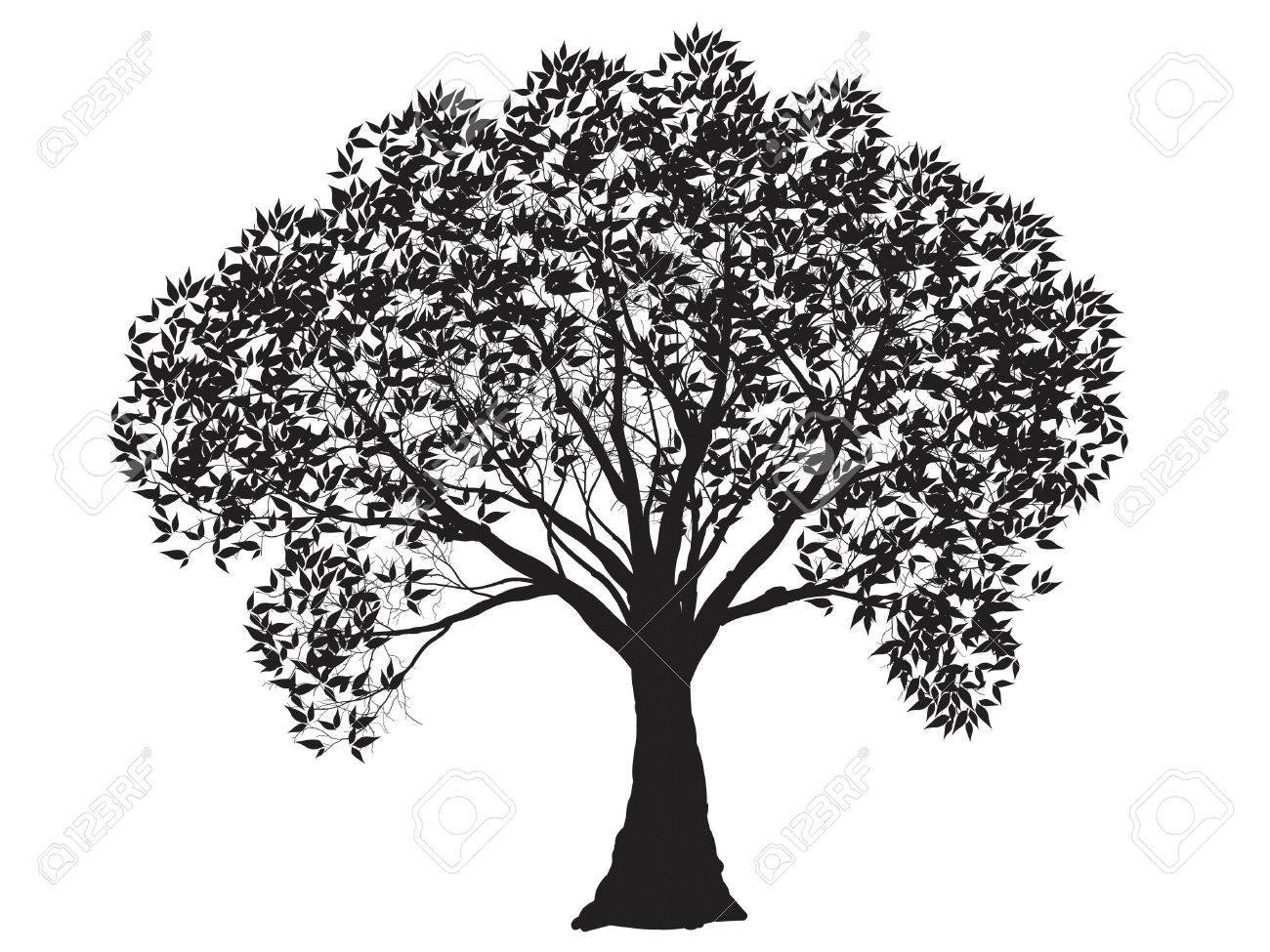 Black tree silhouette isolated on white background vector stock vector 37551747