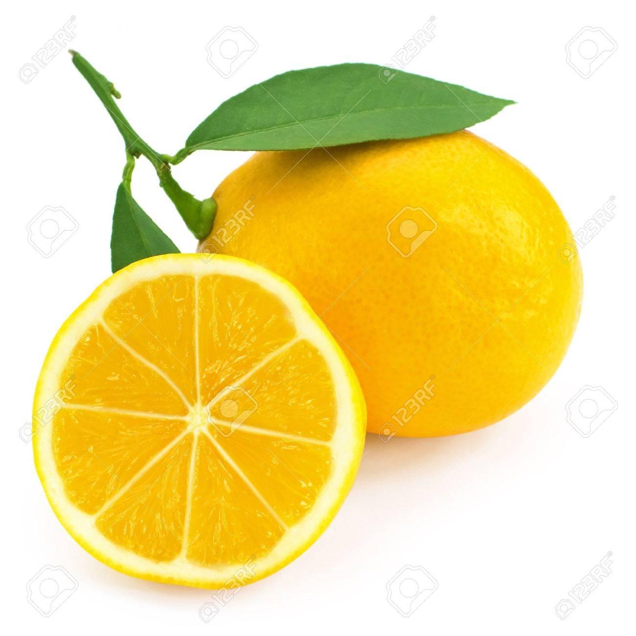 lemon  Fresh lemon citrus  Lemon