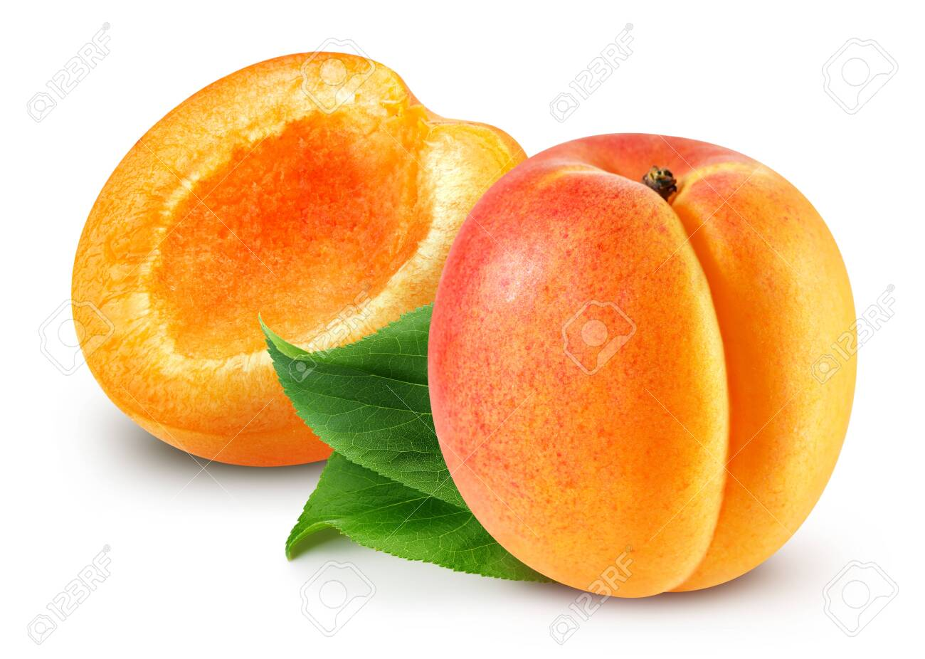 Apricot isolated Clipping Path - 122228753