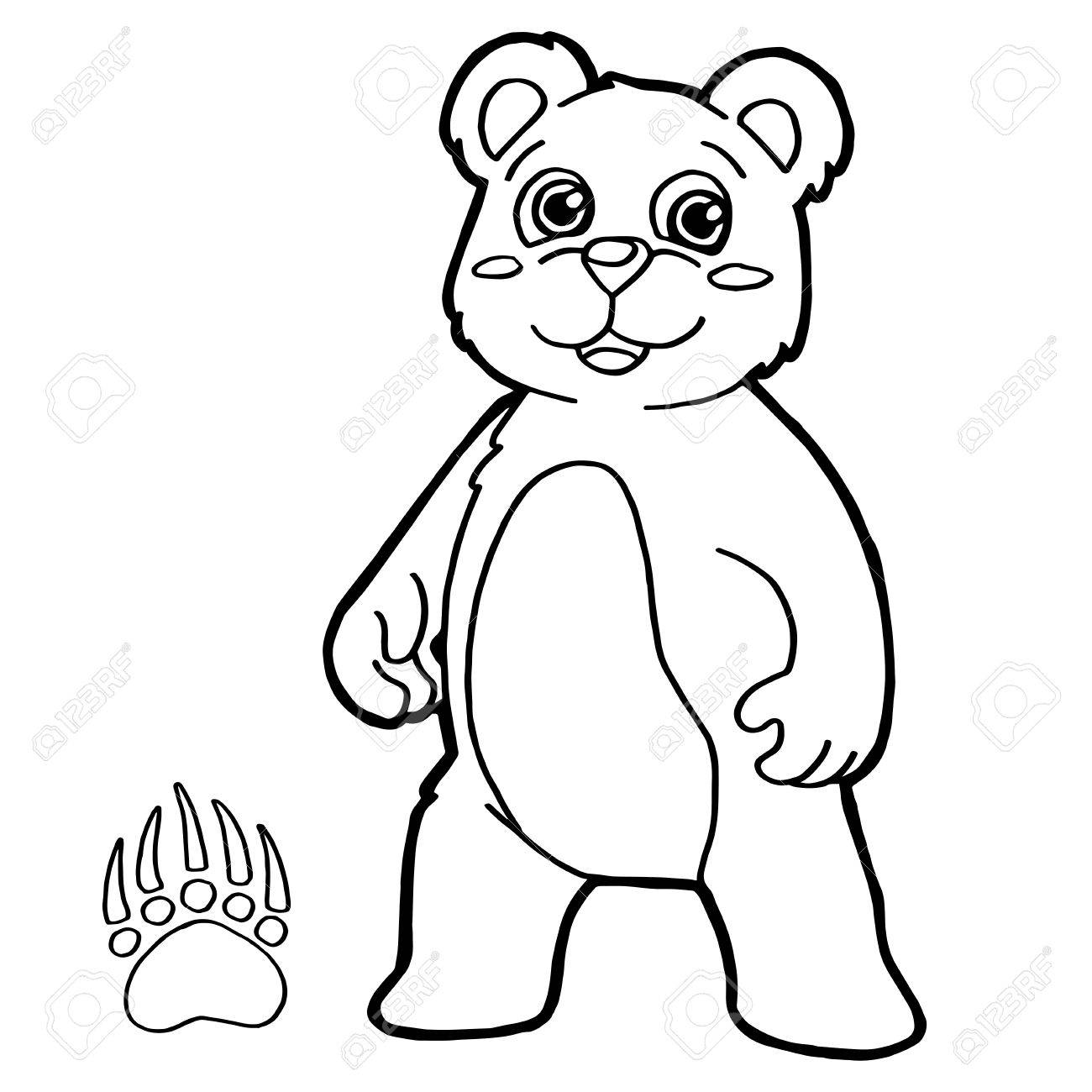 Bear With Paw Print Coloring Pages Vector Stock