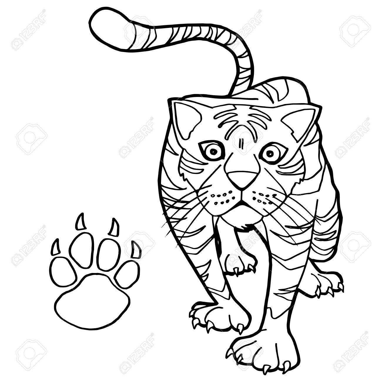 Tiger With Paw Print Coloring Page Vector Royalty Free Cliparts ...