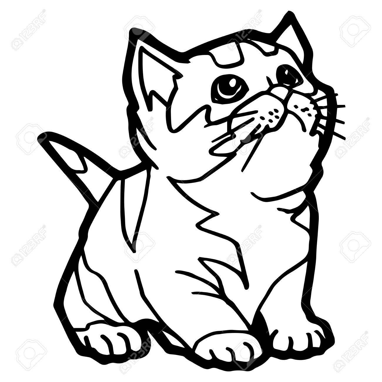 Kleurplaten Dieren Kat Coloring And Drawing