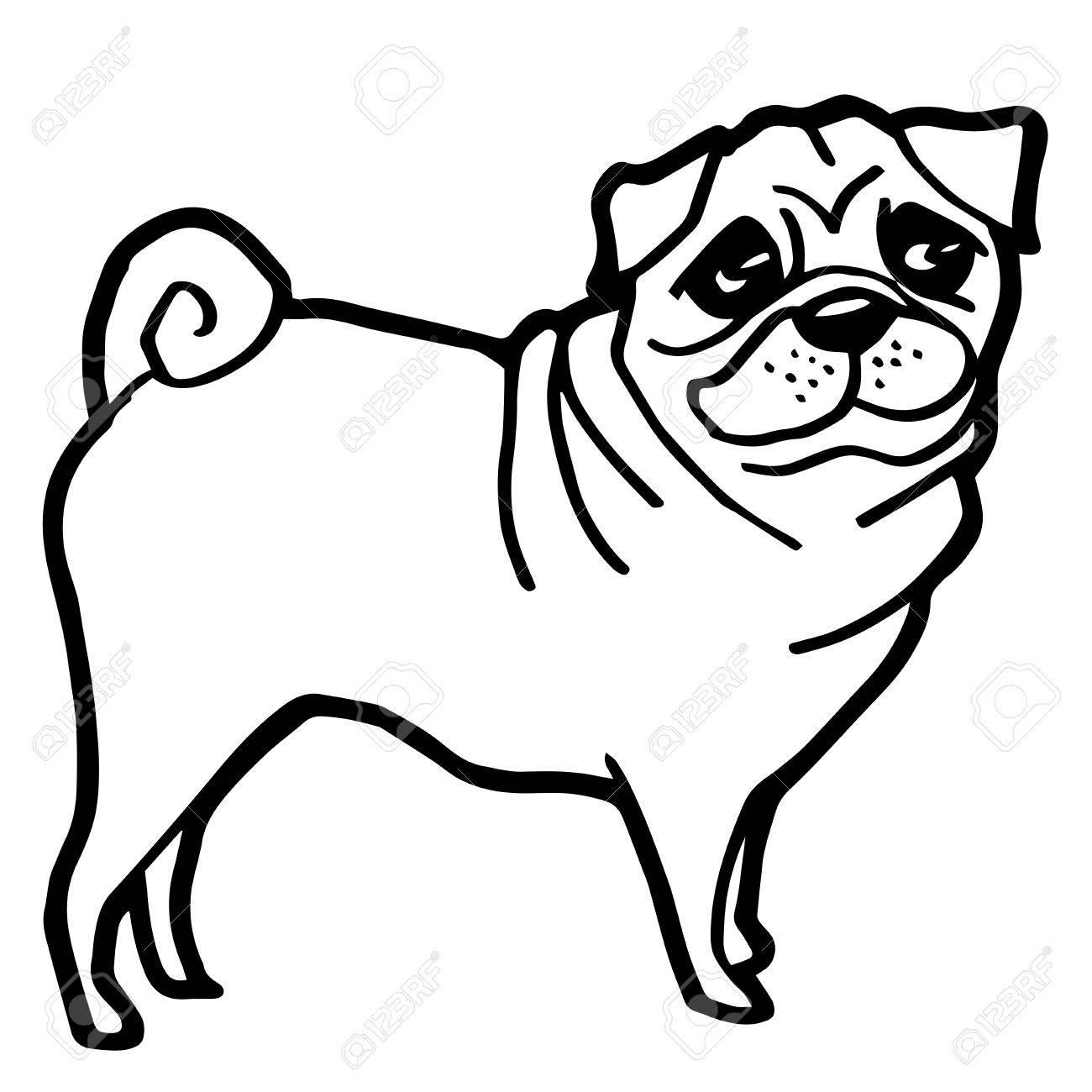 Increíble Dibujos De Perros Pug Para Colorear