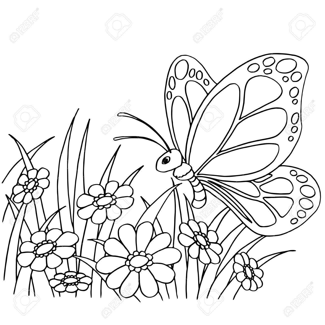 Mariposa Y Flor De Dibujos Animados Para Colorear Pagina