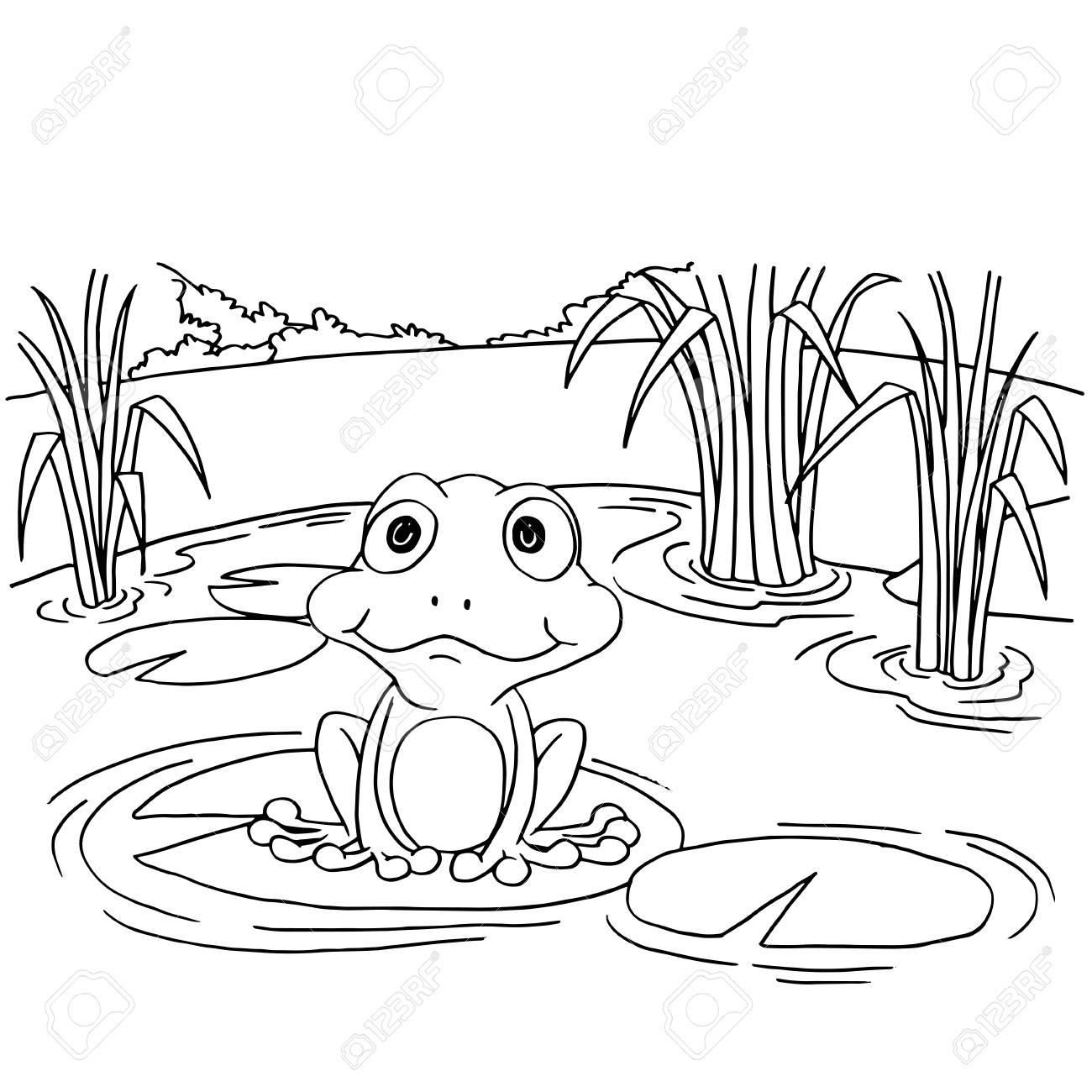 Rana De Dibujos Animados En El Lago Para Colorear Ilustración ...
