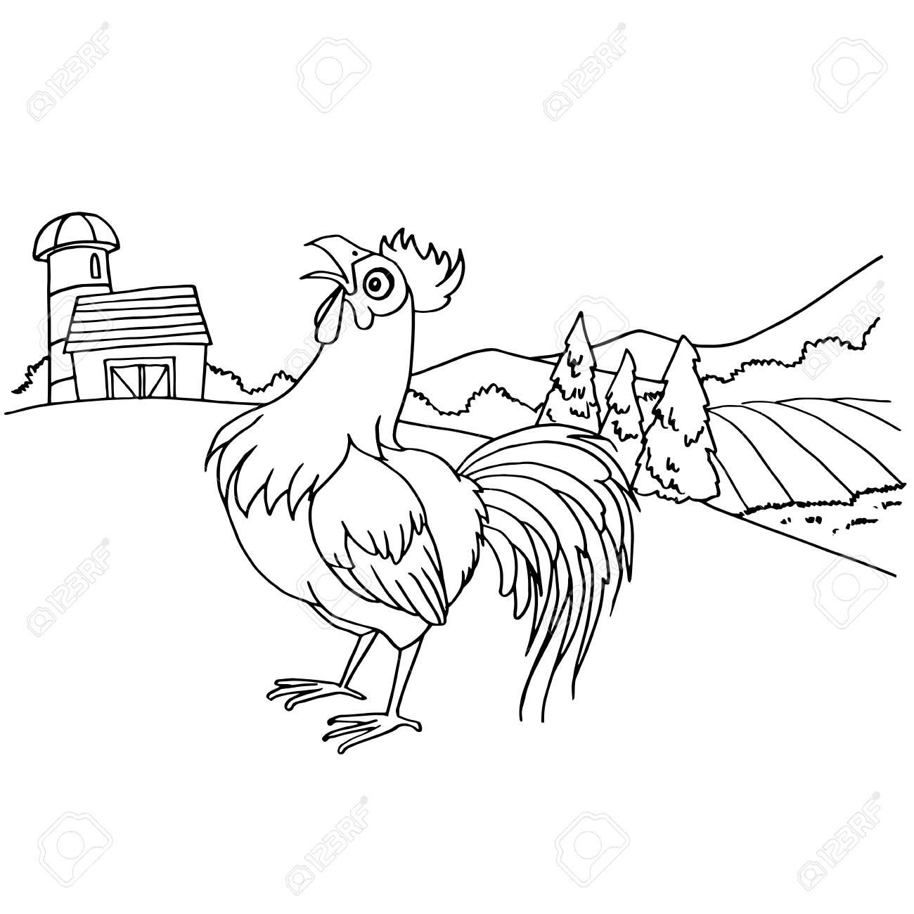 Ilustración De Vector De Dibujos Animados Gallo Para Colorear Página