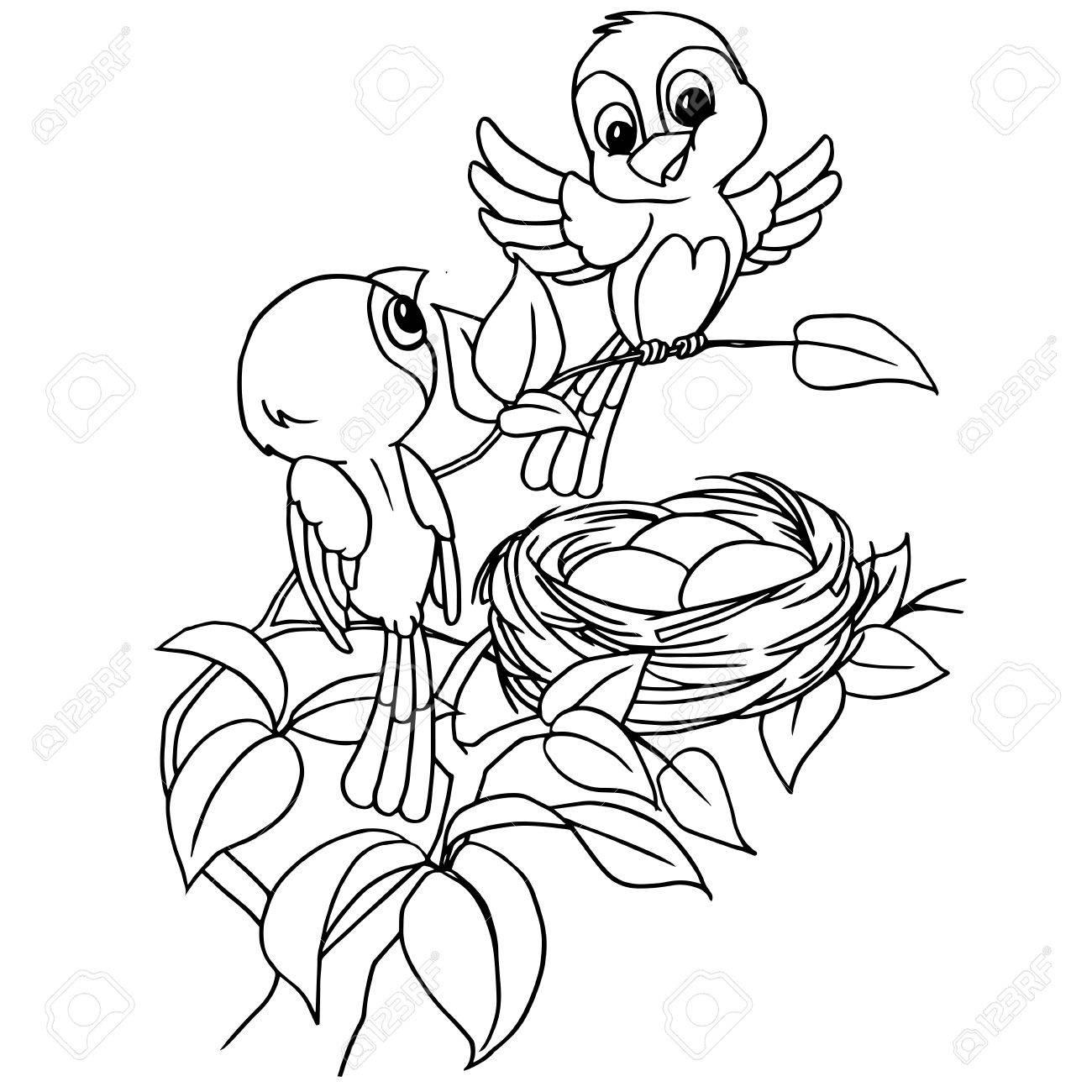 Huevo De Pájaro De Dibujos Animados En Vector De Página Para
