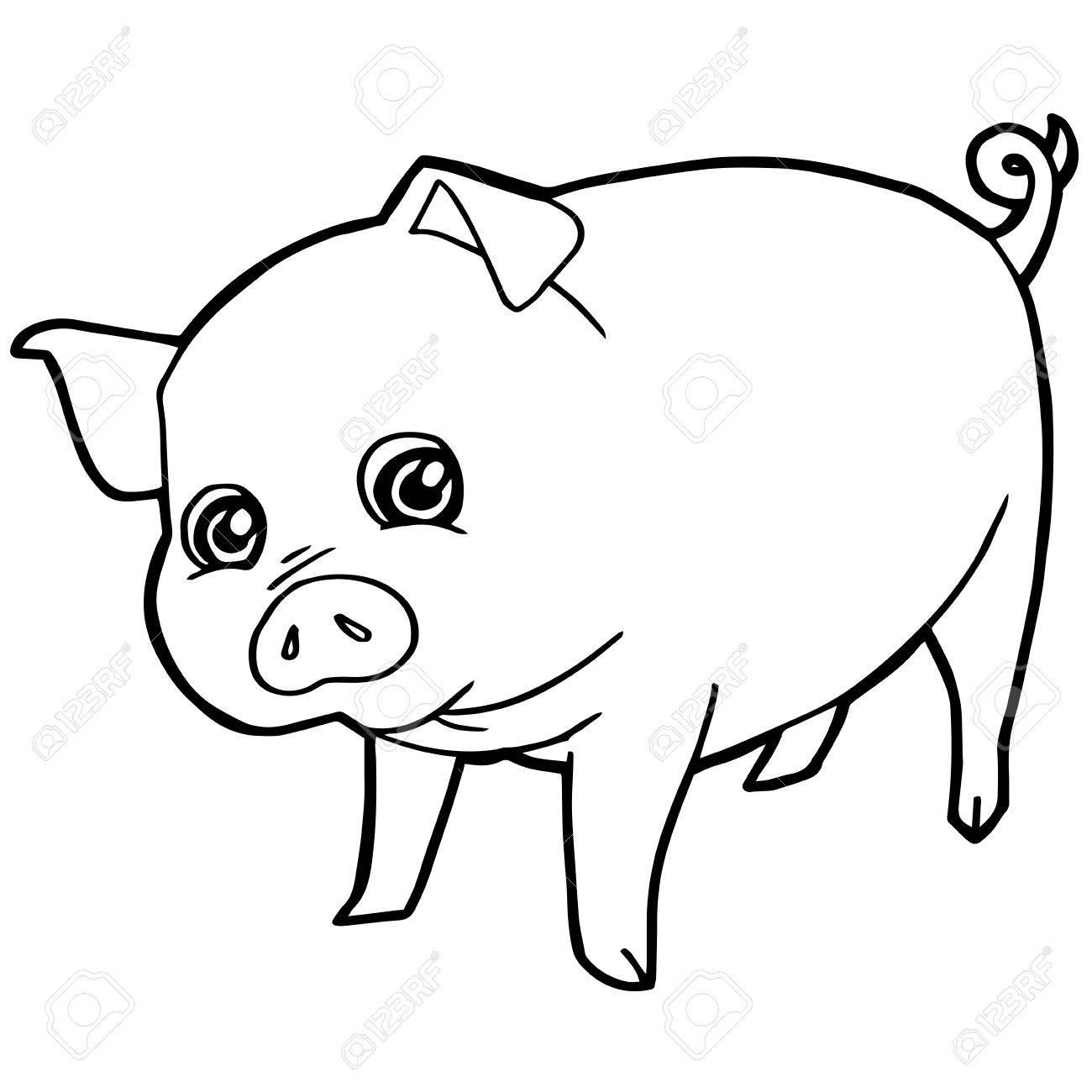 Cartoon Niedlichen Schwein Färbung Seite Vektor-Illustration ...