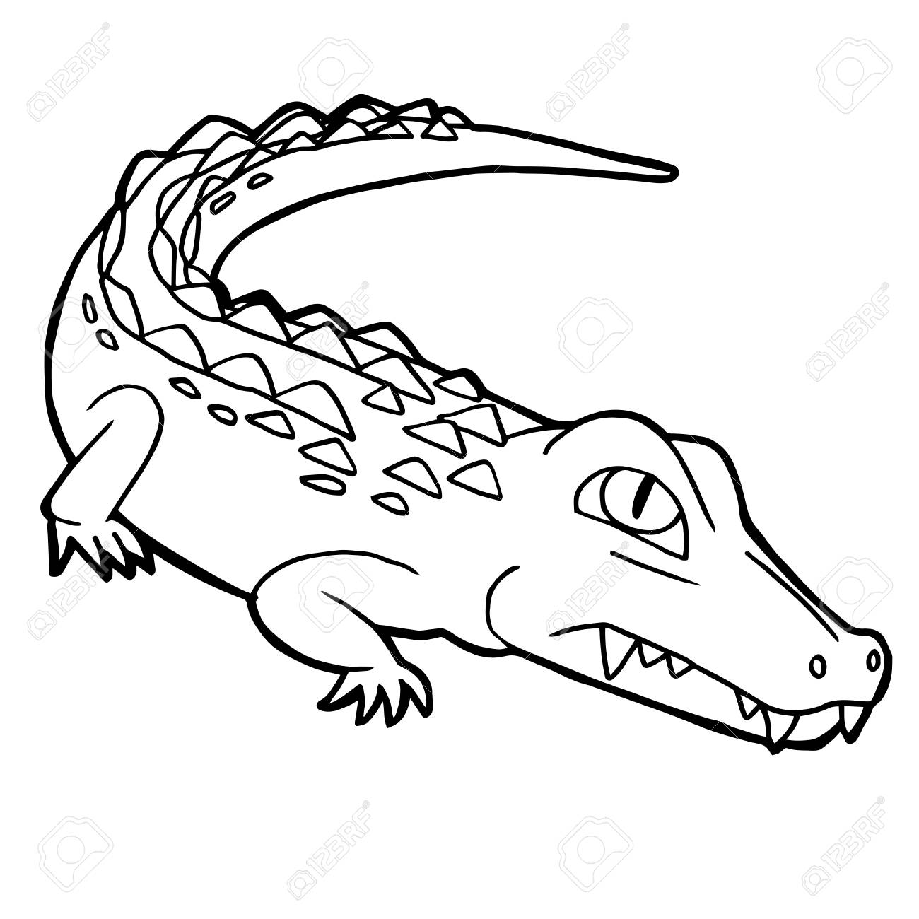 Cartoon Cute Crocodile Coloring Page Vector Illustration Royalty ...