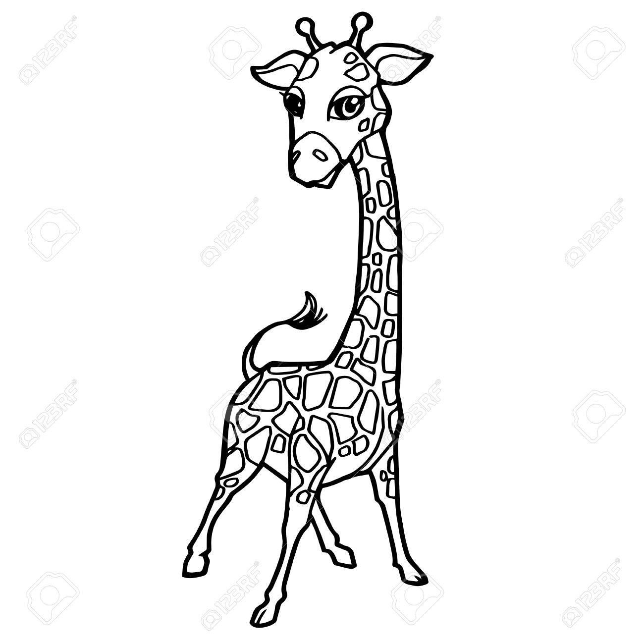 Cartoon Cute Giraffe Coloring Page Vector Illustration Royalty Free Cliparts Vectors And Stock Illustration Image 83074251