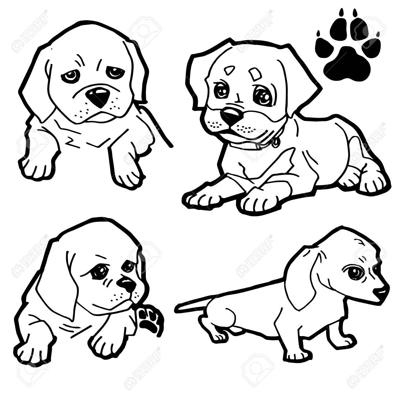 Dog Cartoon And Paw Print Coloring Book On White Background Vector Stock
