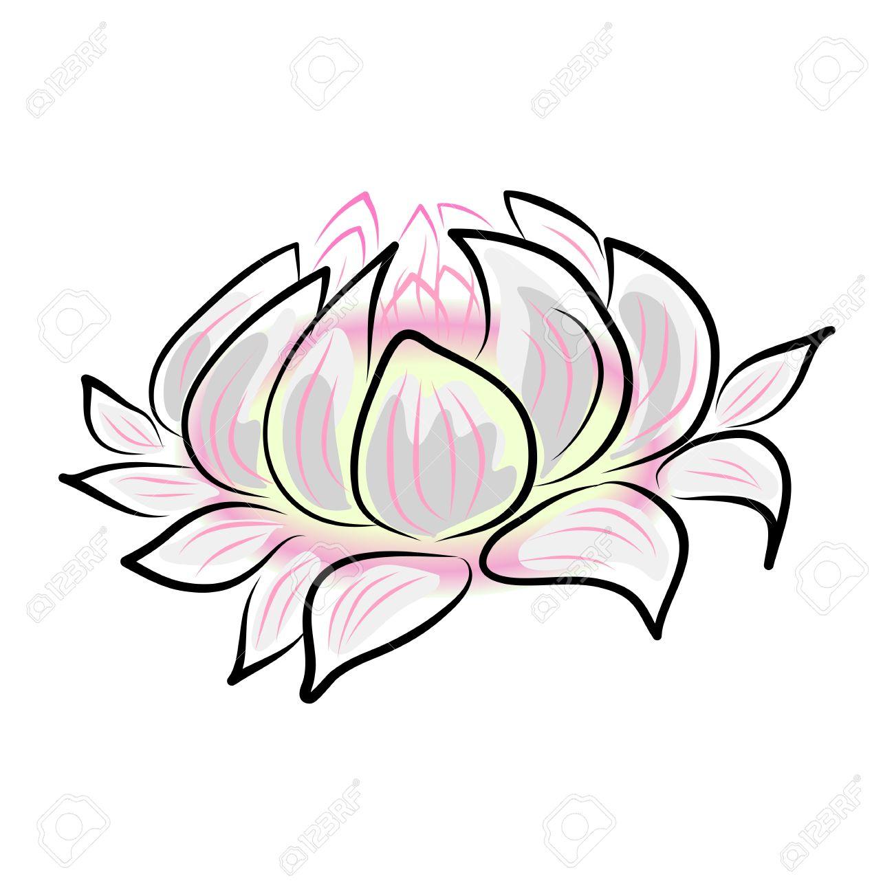 Dessin A La Main Nenuphar Lotus Fleur Clip Art Libres De Droits