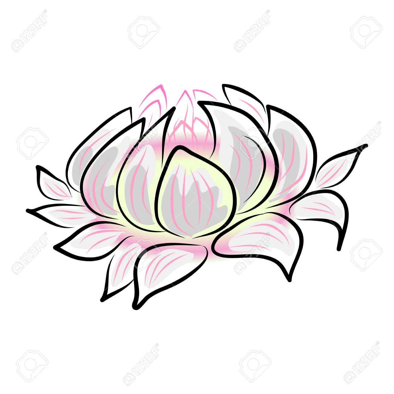 Hand drawing water lily lotus flower royalty free cliparts hand drawing water lily lotus flower stock vector 19469723 mightylinksfo