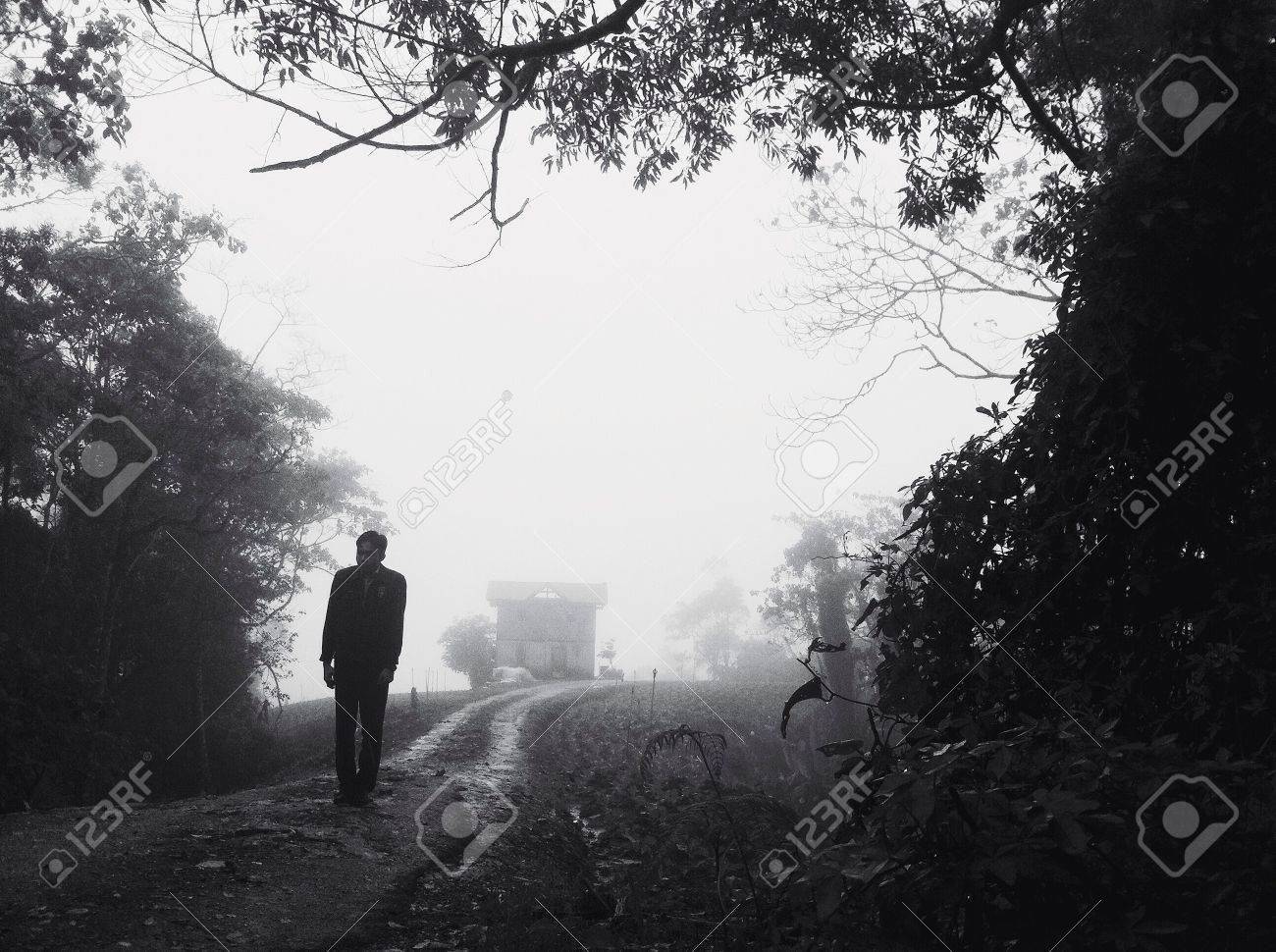 A Man Walking In A Foggy Forest Stock Photo Picture And Royalty Free Image Image 24309998