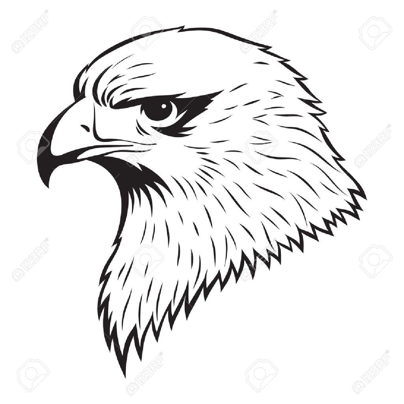 Simple illustration of Eagle head Stock Vector - 18155631