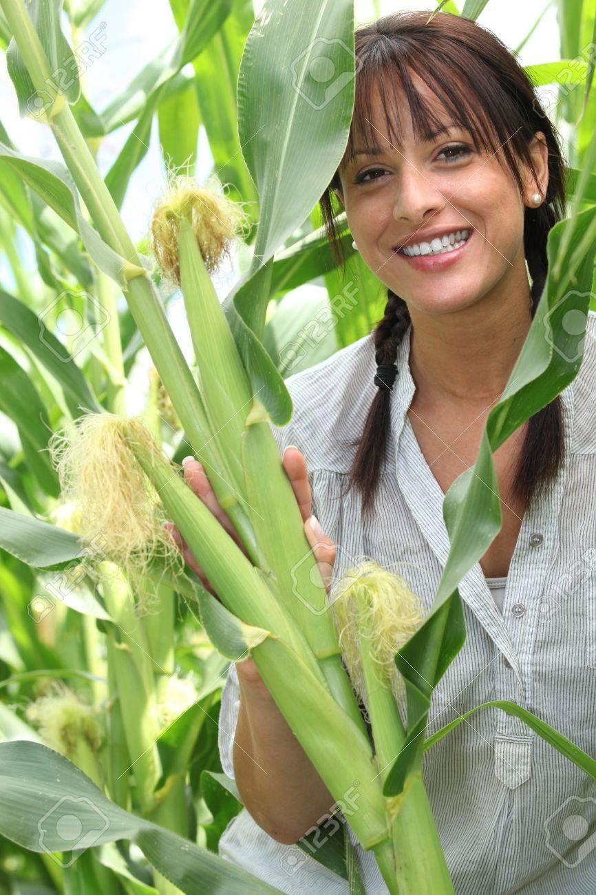 Beautiful young woman in a sweetcorn field Stock Photo - 10855031
