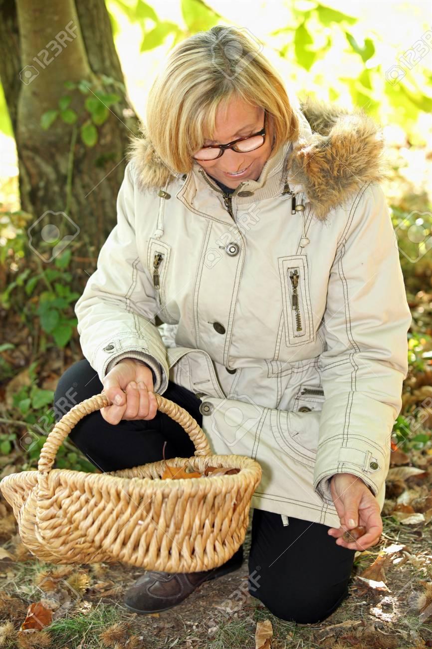 senior woman gathering hazelnuts Stock Photo - 11757390