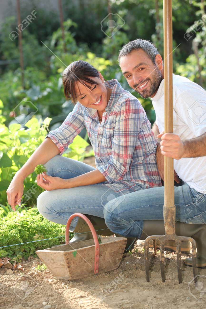 Couple gardening Stock Photo - 12133180